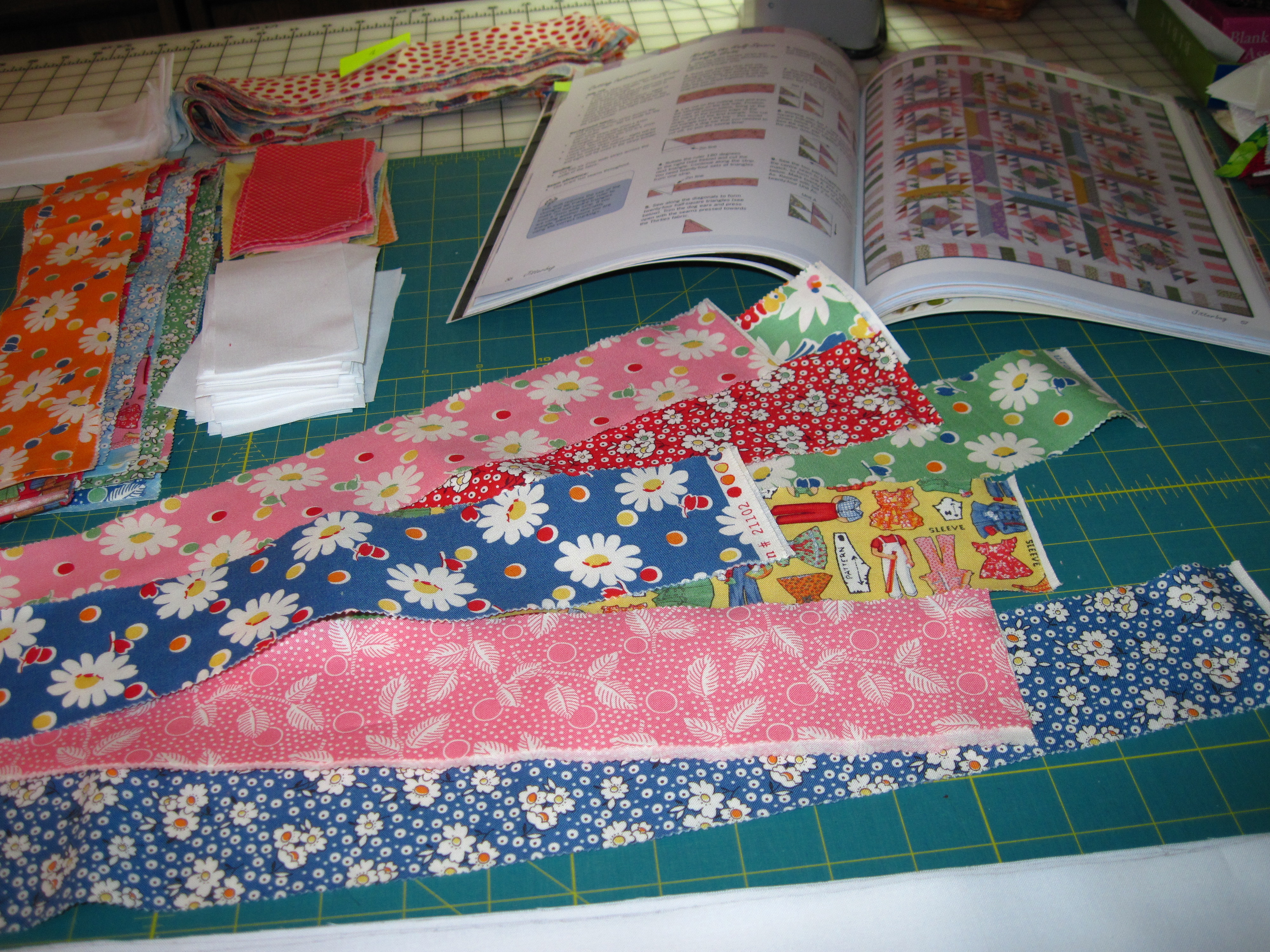 My First Quilt Project For 2010 Quilting Linda